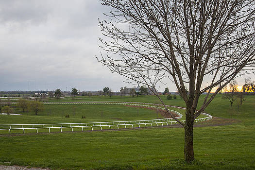 Jack R Perry - The Training Barn and Turf Track