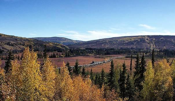 The Trans Alaska Pipline by Michael Rogers