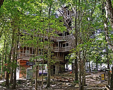 Paul Mashburn - THE TREE HOUSE