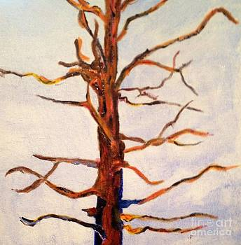 The Tree by Shirley Barone