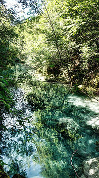 Weston Westmoreland - The Turquoise Waters of the Forest River No1