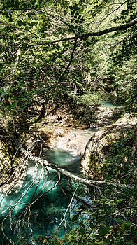 Weston Westmoreland - The Turquoise Waters of the Forest River No2