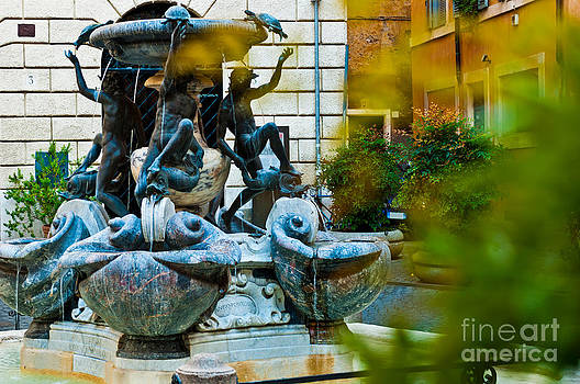 The Turtle Fountain in Rome by Luis Alvarenga