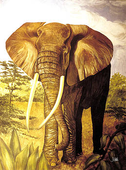 The Tusker by John Hebb