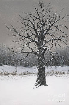 The Twisted Tree by Phil Christman