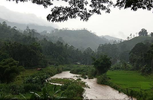 The Valley by Ajithaa Edirimane