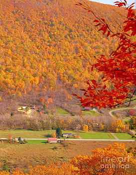 Linda Rae Cuthbertson - The Valley Below Fall Foliage