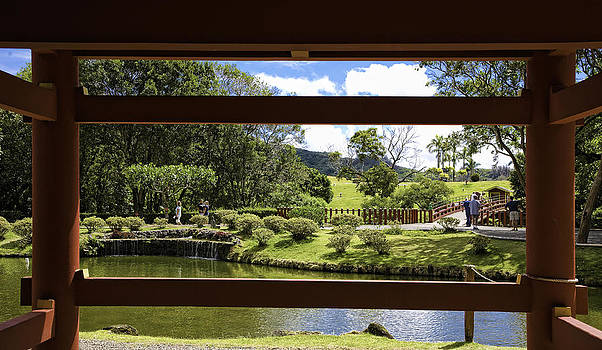 The view at Byodo-In by Joanna Madloch