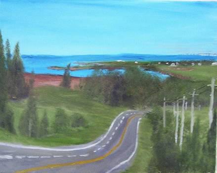 The View from an Island Highway  by Tony  DeMerchant