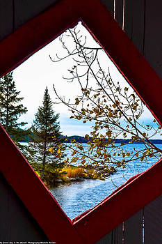 The View by Michelle Ressler