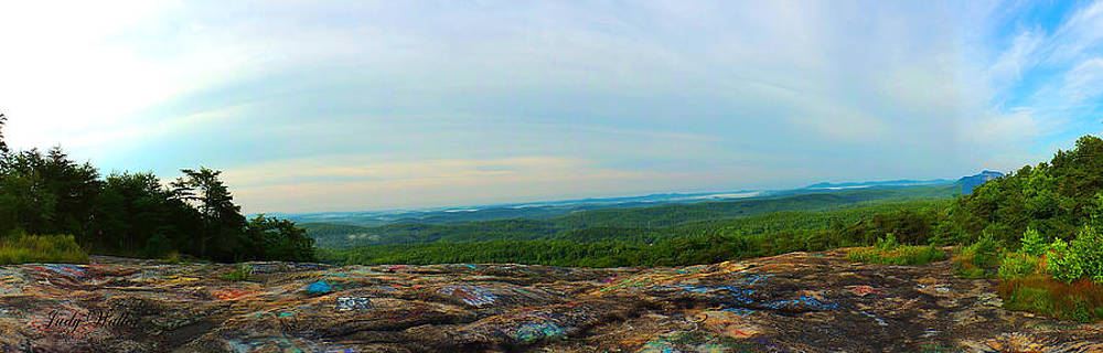The View On Bald Rock by Judy  Waller
