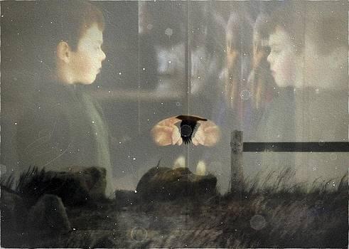 Marysue Ryan - the vision