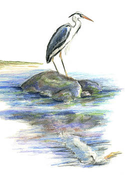 Ellen Miffitt - The Wait by a Great Blue Heron
