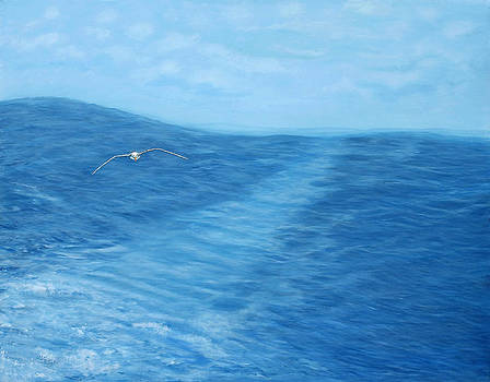 The Wake of the Albatross by Laura Spalinger