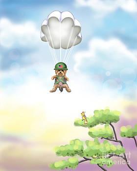 The War Hero by Catia Lee
