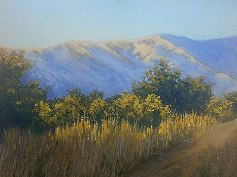 The warm gold of the evening by Yaroslav Kuvshinov