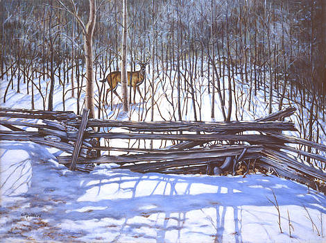 Richard De Wolfe - The Watcher in the Wood