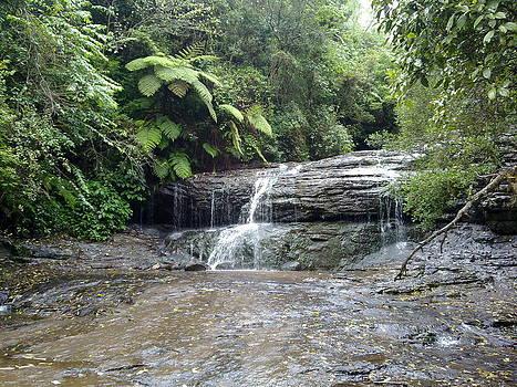 The waterfall by Meghna Suvarna