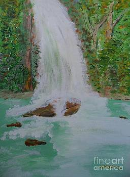 The Waterfall Of An Adventure by Bobbi Groves