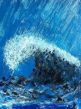 The Wave by Michelle Deyna-Hayward