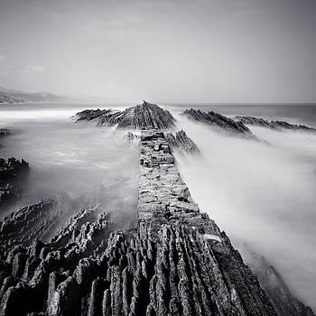 The Wavebreaker by Nina Papiorek