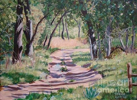 The Way Home by Terrie Leyton