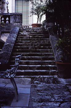 The Way Up by Bob Whitt
