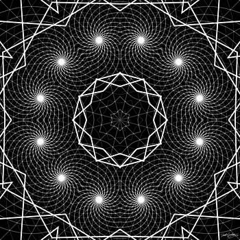 The Web of Life by Derek Gedney