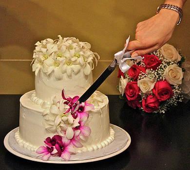Venetia Featherstone-Witty - The Wedding Cake