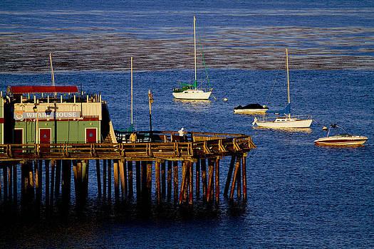 Tom Kelly - The Wharf