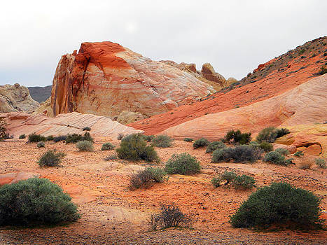 Frank Wilson - The White Domes Valley Of Fire.
