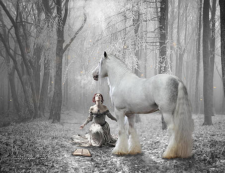 The White Fairytale by Terry Kirkland Cook