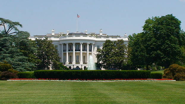 The White House by Shara  Wright