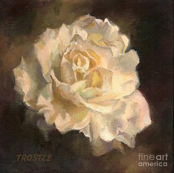 The White Rose by Patti Trostle