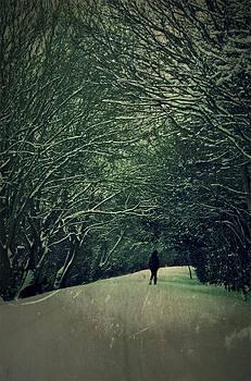 The White Walk by Tim Kahane