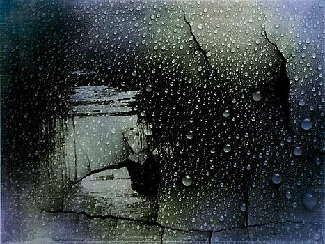 The Window by  Jeff Mantz Rhodes