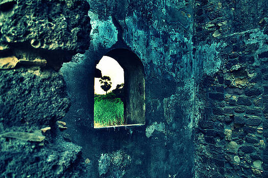 The Window by Salman Ravish