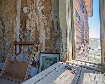 Stephen Whalen - The Window