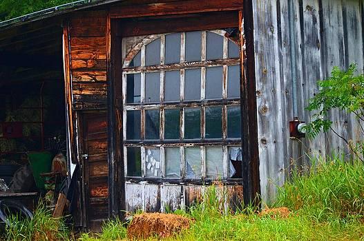 The Windowed Door by Sharon L Stacy