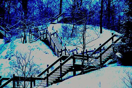 The Winter Blues by Paul Szakacs