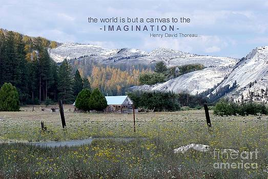The World is a Canvas by Mary Lou Chmura