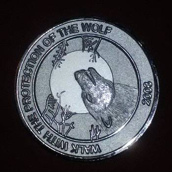 The Zombie Outbreak Coins That We Are by Jamie Schatten