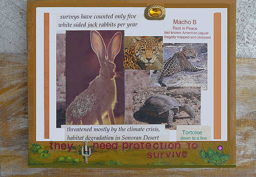 They Need Protection to Survive by Mary Ann  Leitch