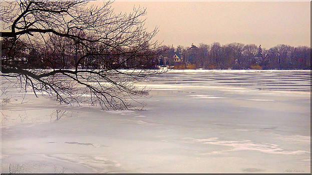 Thin Ice by Mikki Cucuzzo