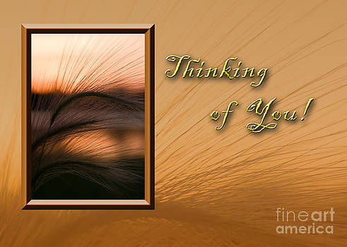 Jeanette K - Thinking of You Grass Sunset