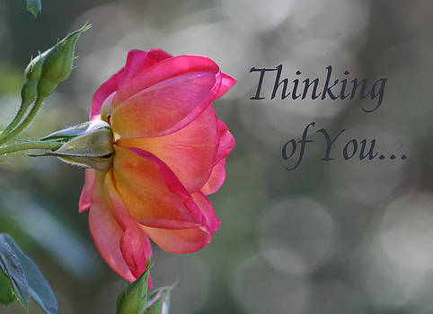 Thinking of You by Marna Edwards Flavell