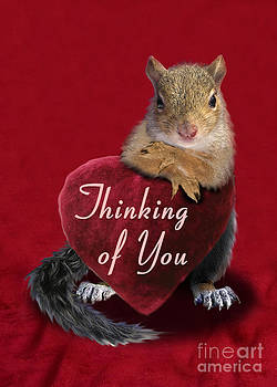 Jeanette K - Thinking of You Squirrel