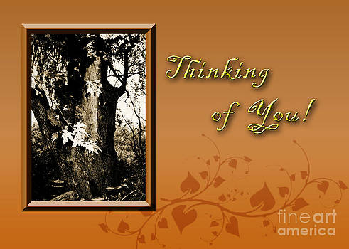 Jeanette K - Thinking of You Willow Tree
