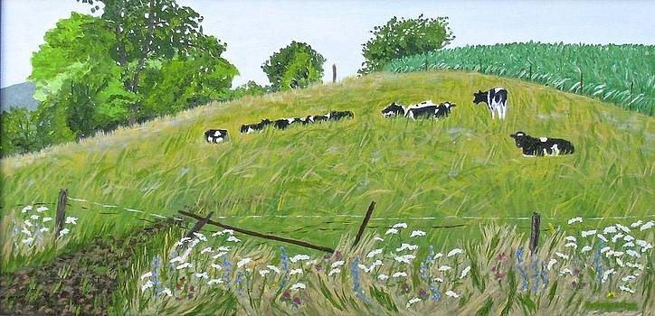 This bed of herd's grass by Barb Pennypacker