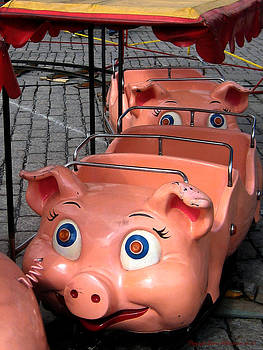 This Little Piggy Went to Market by Leena Pekkalainen